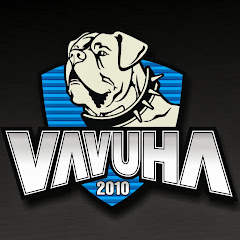 Рейтинг youtube(ютюб) канала Vavuha