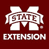 MissStateExtension