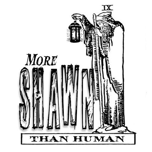 More Shawn than Human