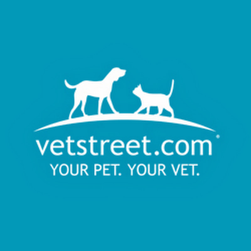 vetstreet.com