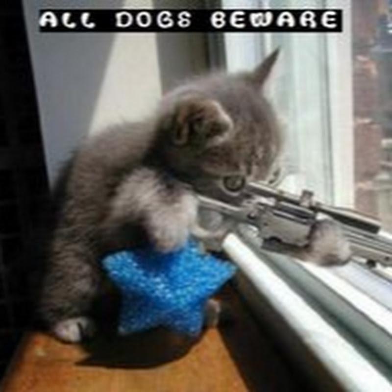 SavageSniper22