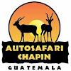 Auto Safari