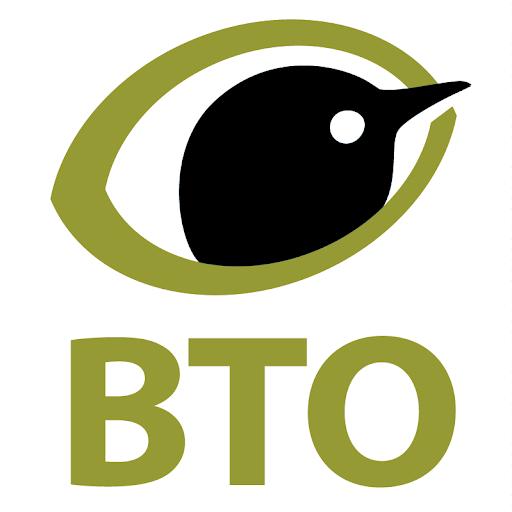 BTOvideo