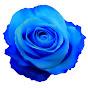 Blue Rose の動画、YouTube動画。