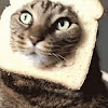 BreadHeadKitty