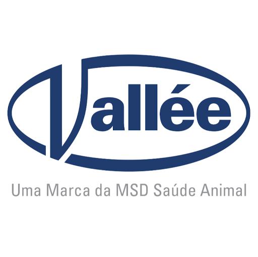 Vallée S.A.