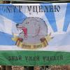 "Wervolf313 & tactical group tourism ""Wolves"""