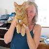 Lisa Larson: Pawstalk Animal Communication & Reiki