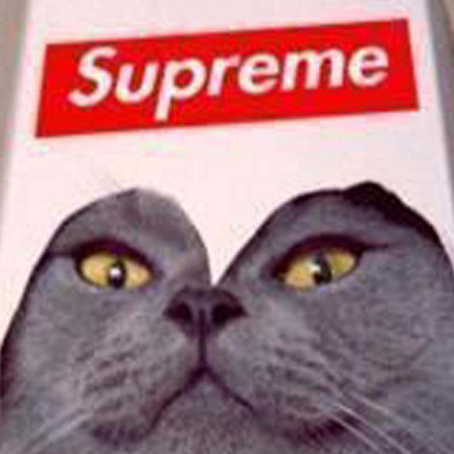 Supreme Cat Show