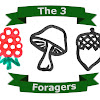 the3foragers