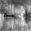 zorena19