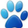 blue1kitty1cat1