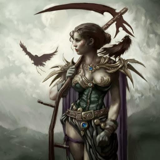 Wandering Raven