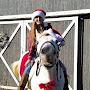 Lillian Equestrian