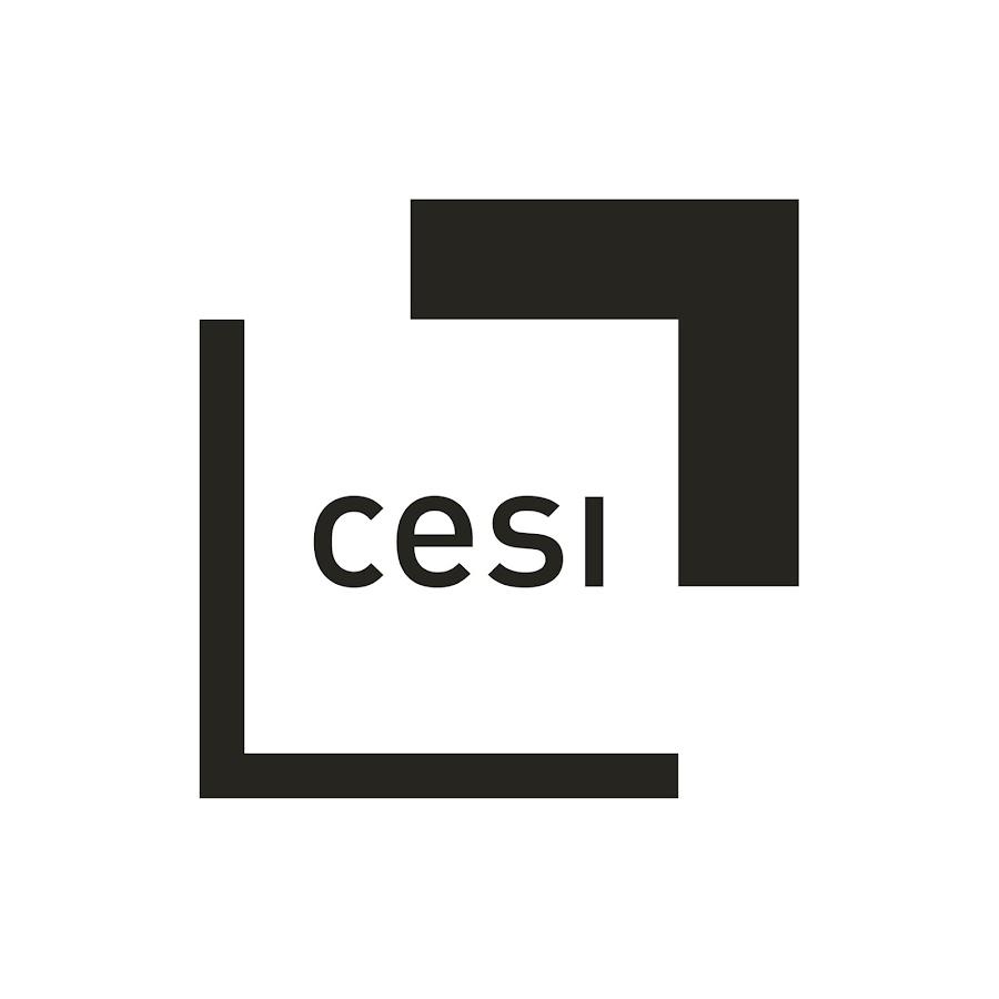 CESI École Supérieure de lAlternance  Centre de