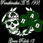 Panathinaikos1908HD