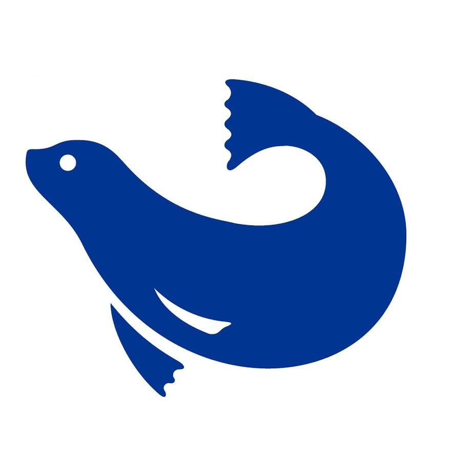 The Maritime Aquarium At Norwalk Youtube