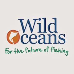 Wild Oceans