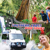 Southern Cross 4WD Tours Gold Coast