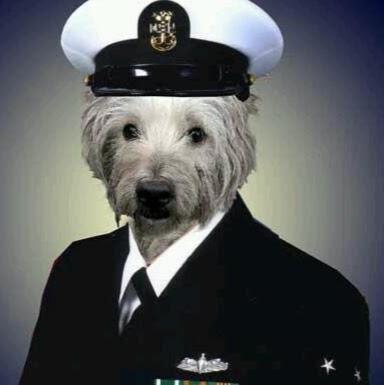 jihadwatchdog1
