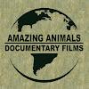 ★Amazing Animals TV★