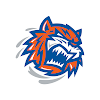 TheSoundTigers