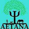 AETANAES