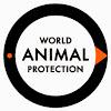 World Animal Protection US