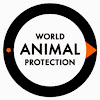 World Society For The Protection of Animals United States of America