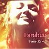 Larabeetheband