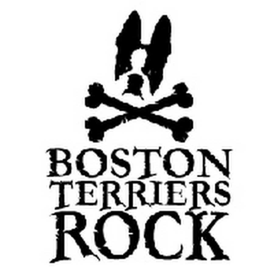 boston terrier coloring pages - cute boston terrier coloring pages coloring pages