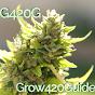 grow420guide Youtube Channel