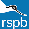 rspbvideo