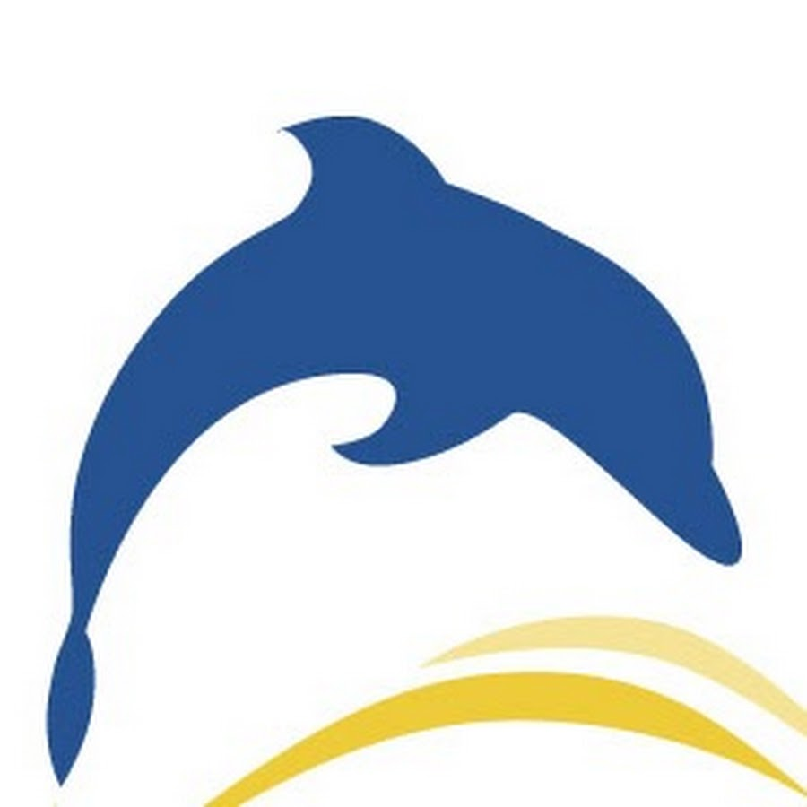 dolphin lifts youtube