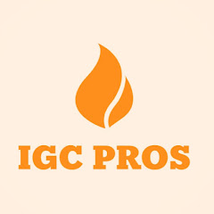 All About Prince Narula