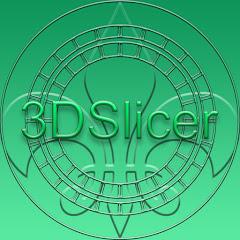 3DSlicer
