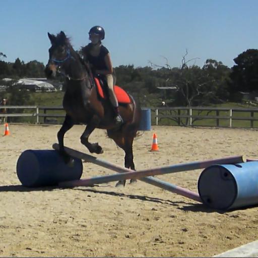 Equestriancowgirl011