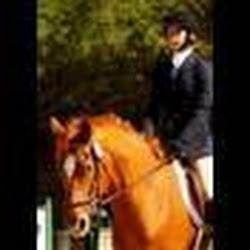 horsechick655