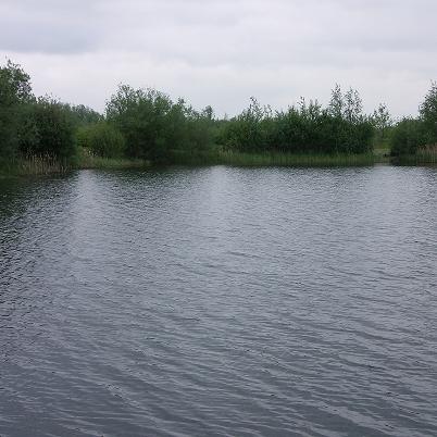 Modern Carp Fishing