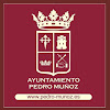 Ayuntamiento de Pedro Muñoz