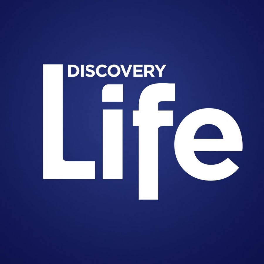 Watch Discovery online   YouTube TV (Free Trial)