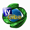 Tv Giba