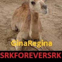 GinaRegina Srkforeversrk