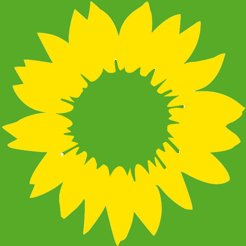 Bündnis 90/Die Grünen-Fraktion in der Bremischen Bürgerschaft