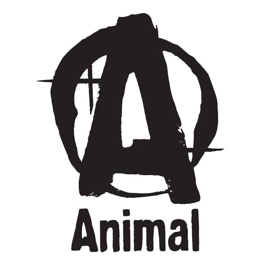 Animal Youtube