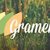 Gramene Database