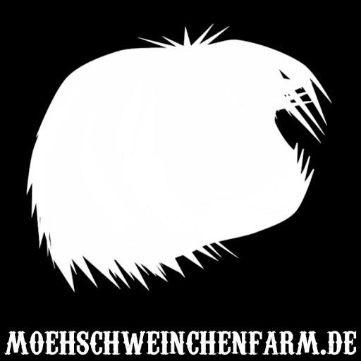 Moehschweinchenfarm.de Meerschweinchen