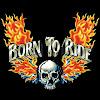 Born To Ride - Motorcycle Media