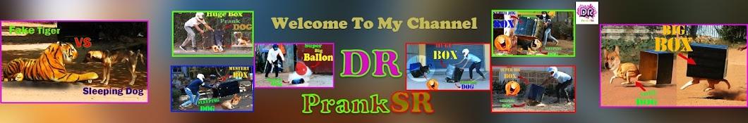 DR PrankSR Banner