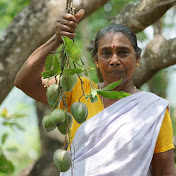 Village Cooking - Kerala net worth